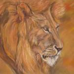 le lion_pastel_49sur59cm