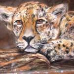 leopard_huile_2009_52x43cm